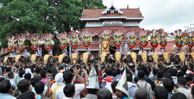 Los elefantes son utilizados para las procesiones religiosas en Kerala.