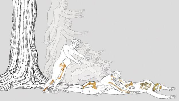Ilustracin que recrea la posible secuencia de la cada de Lucy