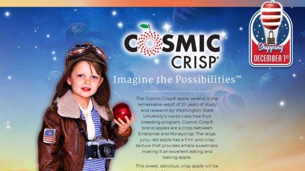 anuncioi de Cosmic Crisp