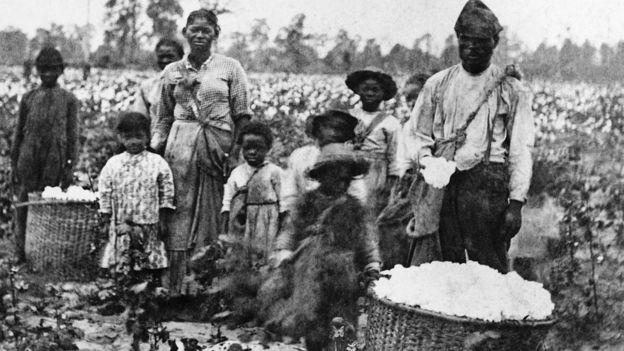 fotografía de una familia de esclavos con hijos recogiendo algodón en un campo