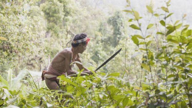 多年來,像印度尼西亞明打威(Mentawai)這樣的土著群體一直敦促世界各地採取一種更可持續的方式與自然共存。