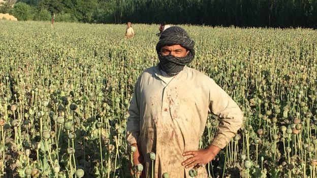 Un granjero-