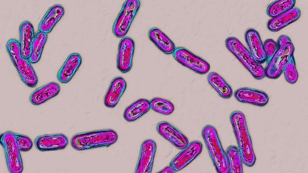 'Clostridium difficile'.