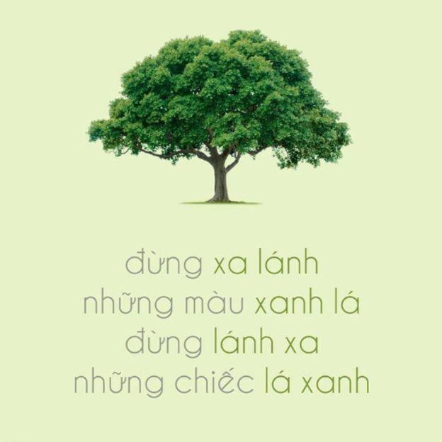 Hình từ một trang FB (@manfortree) vận động bảo vệ cây xanh ở VN