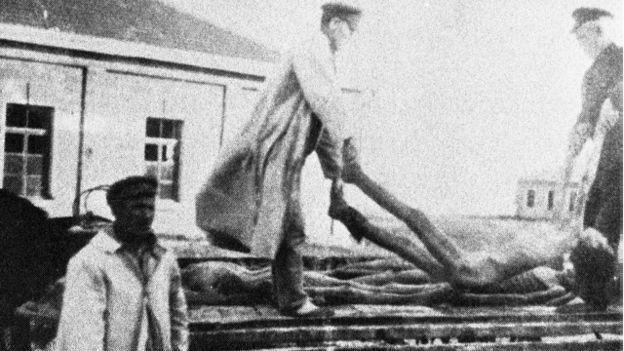Слобожанщина, до якої у 30-ті роки входила частина Донецької області, постраждала від Голодомору найбільше