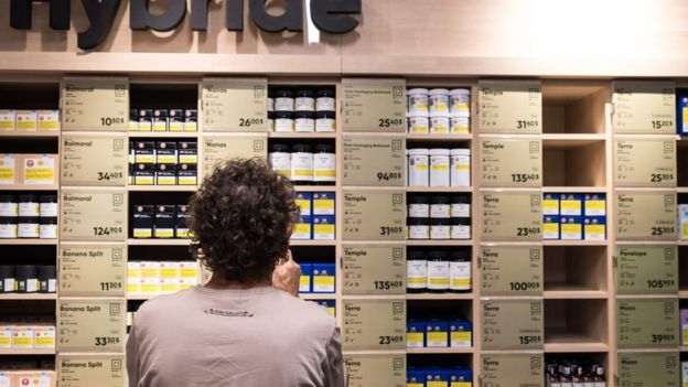 A man looks at a store shelf of cannabis products