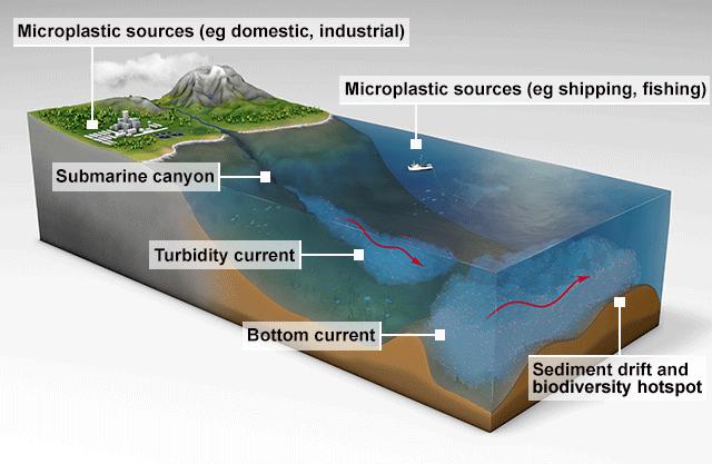 Diagrama dos movimentos do fundo do mar