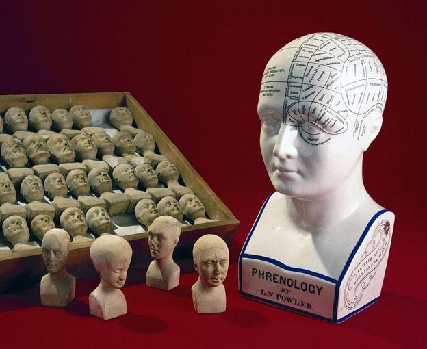 Una cabeza frenológica hecha por los hermanos estadounidenses Lorenzo y Orson Fowler, 1860-1896, y una caja de cabezas pequeñas hechas en 1831 por William Bally de Irlanda, para ilustrar las teorías de la frenología.