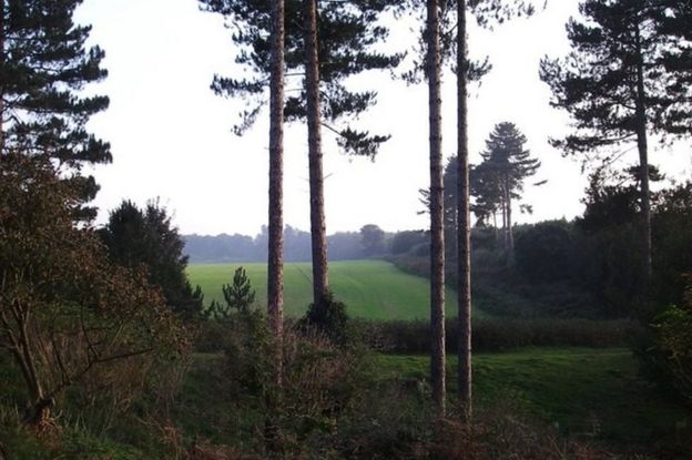 Alleged site of UFO landing in Rendlesham Forest in Suffolk