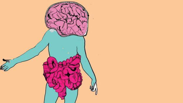 Ilustração de cérebro e intestino no corpo humano