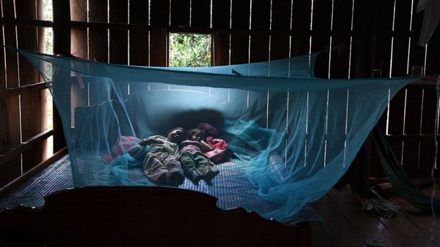 Sleeping under a bed net