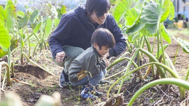 Padre e hijo en una huerta