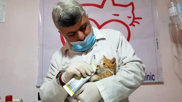 The sanctuary's vet, Dr Youssef