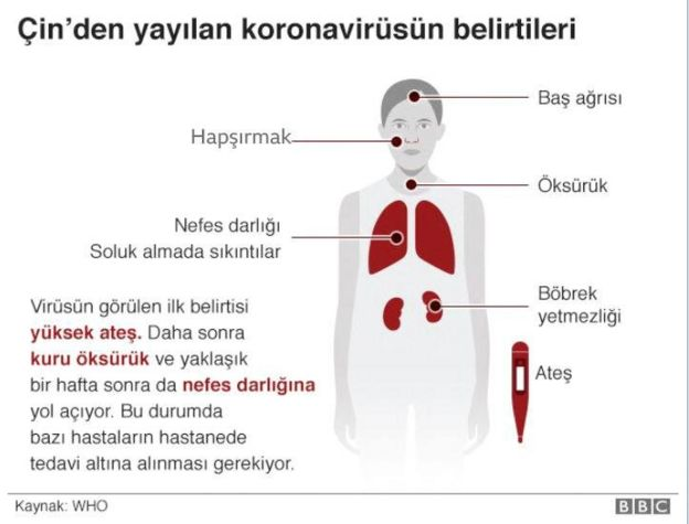 Koronavirüs inforgrafiği