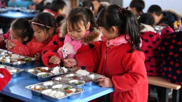 中國小學提供的營養餐