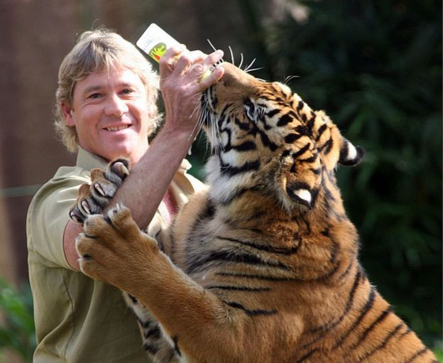steve irwin shipsteve irwin death, steve irwin south park, steve irwin zoo, steve irwin смерть, steve irwin son, steve irwin ship, steve irwin zoo australia, steve irwin funeral, steve irwin show, steve irwin family, steve irwin wife, steve irwin video, steve irwin accident, steve irwin pronunciation, steve irwin photo, steve irwin morte, steve irwin youtube, steve irwin simpsons, steve irwin day, steve irwin moarte