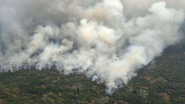 Incendio en el Amazonas.