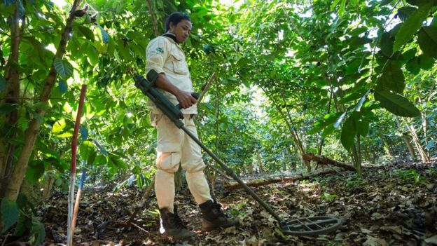 Clearance operations on cluster munitions (December 2014)