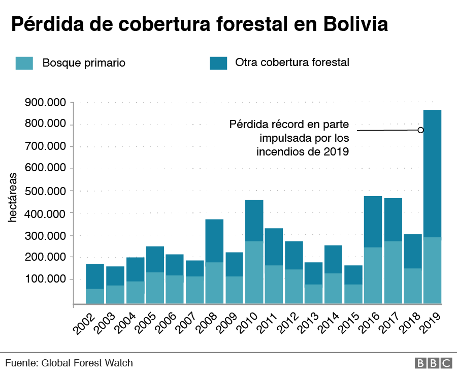Pérdida de cobertura forestal en Bolivia
