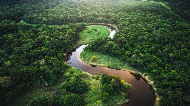 منابع طبیعی سرشار برزیل به رشد اقتصادی این کشور کمک کرده