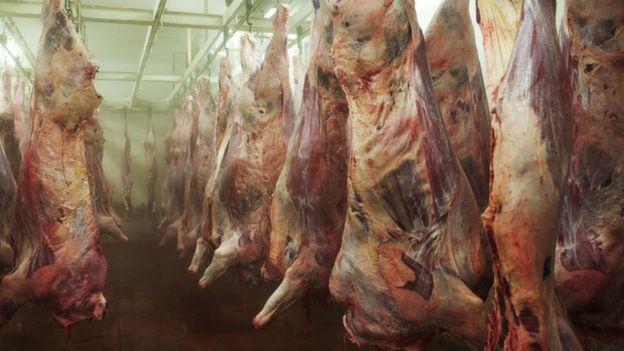 Carnes penduradas em frigorífico