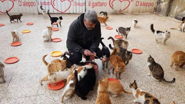 _105920908_feedingfb2_976 - Return of the cat man of Aleppo - Inspiration & Hope