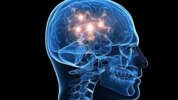 Ilustração do cérebro