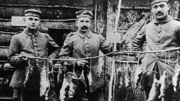 Крысоловы во время Первой мировой войны