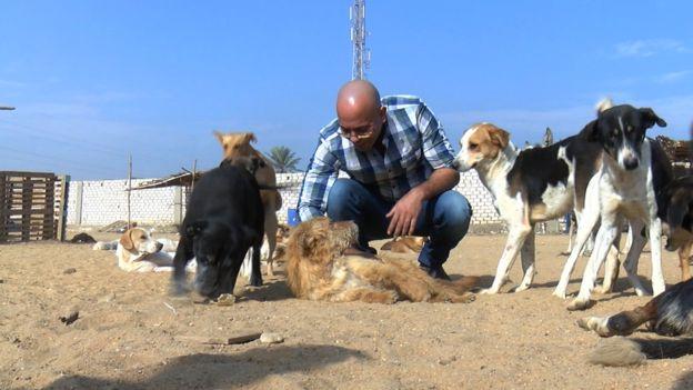 عبدالرحمن يوسف الناشط في مجال حقوق الحيوان