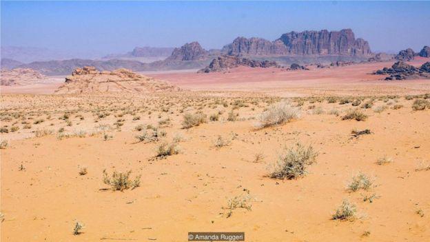 在沙漠裏的部分地區,你可以同時看到白色、黃色、紅色和紫色的沙子
