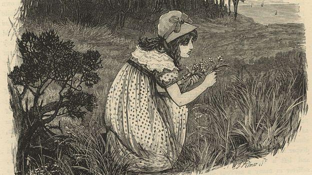 Mary Fairfax Somerville em um campo de flores