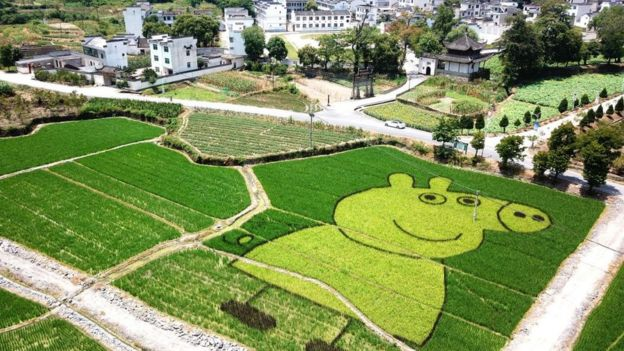 Peppa Pig en un campo de arroz en China.