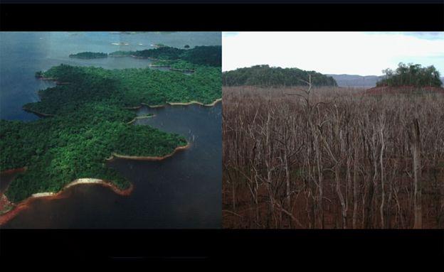 Islas del lago Guri