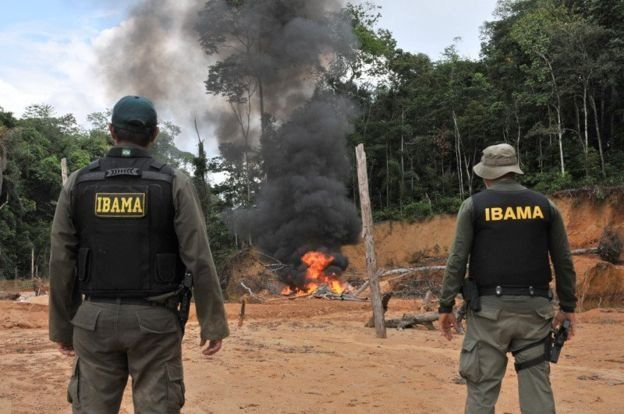 Agentes do Ibama vendo incêndio