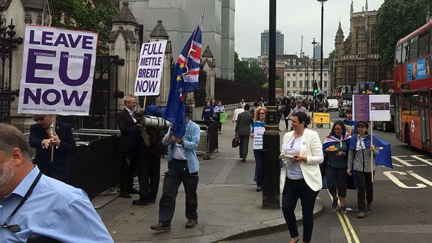 Pro-Brexit demonstrators