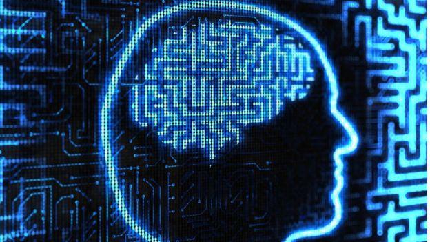 Cerebro en ordenador