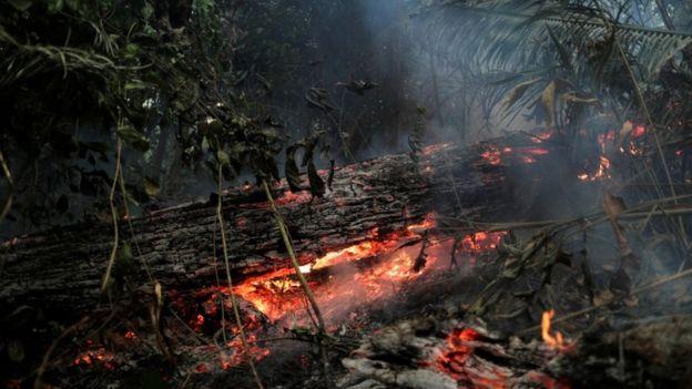 Incêndio na floresta amazônica, em Rondônia