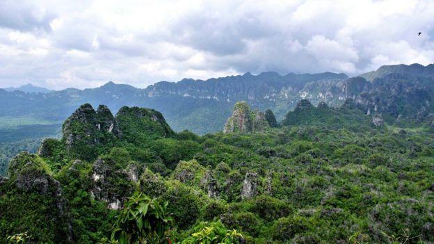 Las cuevas están ubicadas en una región remota y montañosa de Kalimantan Oriental