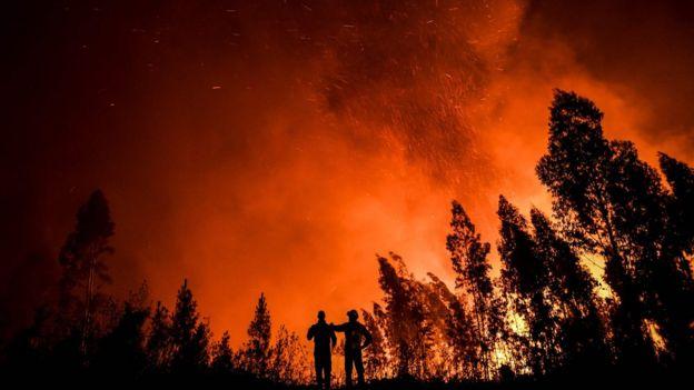 В тушении огня участвуют более 800 пожарных