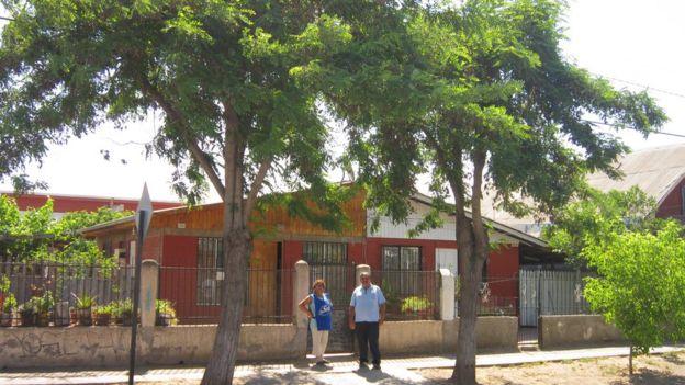 Árboles en Santiago de chile