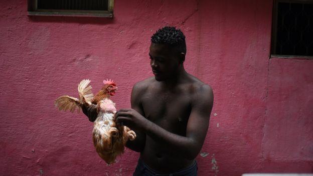 Congolês depena uma galinha para preparar uma refeição