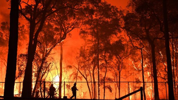 Tiny silhouette of a firefighter framed against a wall of flame in the Wollemi National Park fire north-west of Sydney on 19 November 2019
