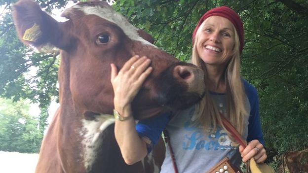 Cow with singer Sharon Shannon