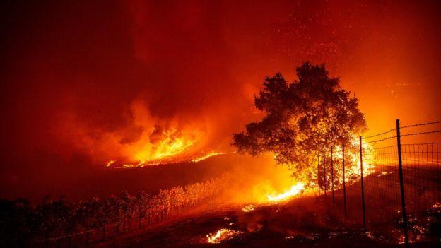 A fire at a vineyard near Geyserville