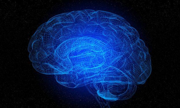 انسانی دماغ کا ایک تصوراتی ماڈل