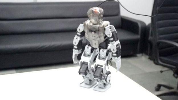 How we built India's biggest robot company' - BBC News