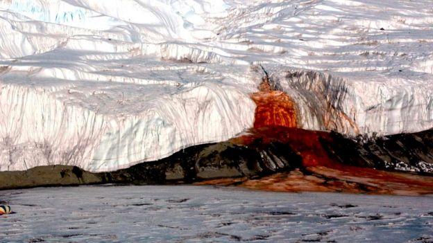 До Кровавого водопада в Антарктике можно добраться только на вертолете или на круизном судне