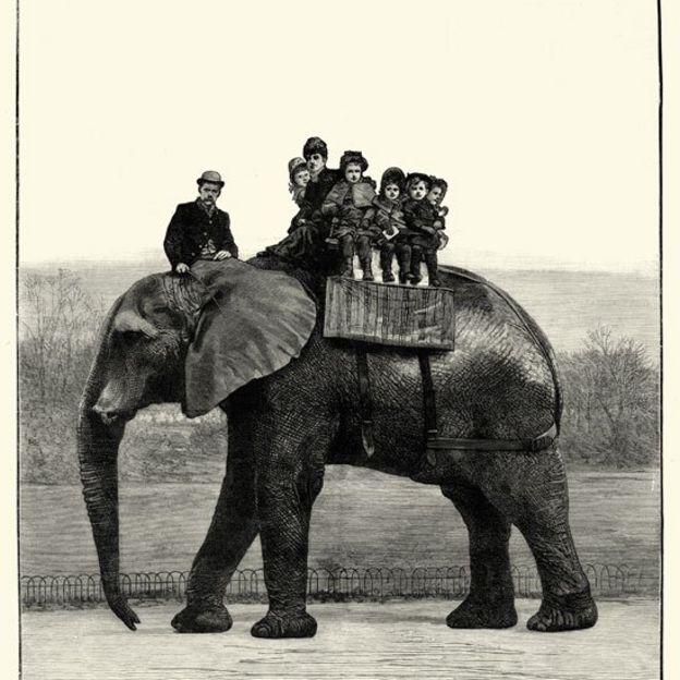 Jumbo cargando niños en su lomo Foto: Wiki Commons