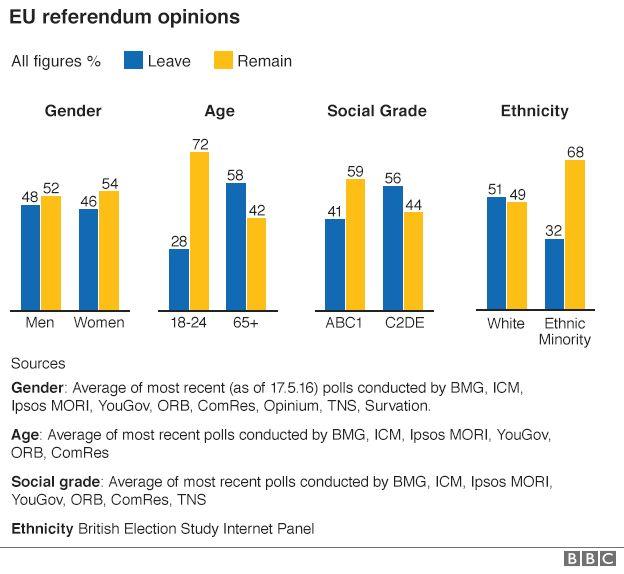 EU referendum opinions