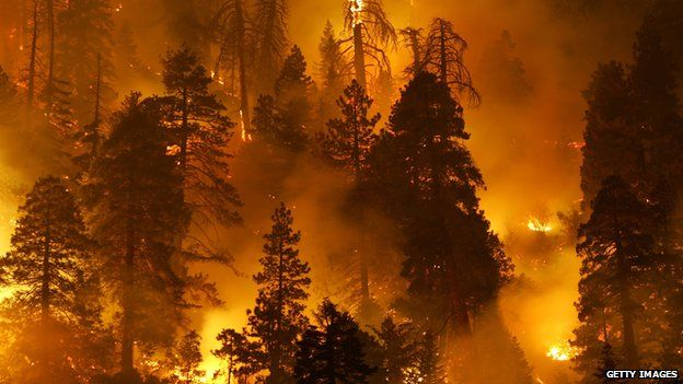 Small drones flying near wildfires have prevented fire-fighting aircraft taking off